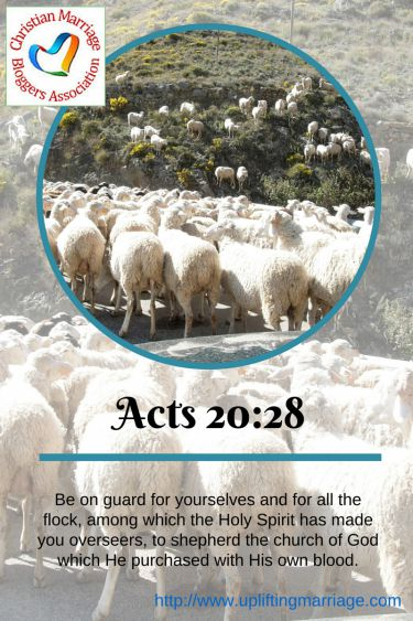 Be on guard for yourselves and for all the flock, among which the Holy Spirit has made you overseers, to shepherd the church of God which He purchased with His own blood. Acts 20:28